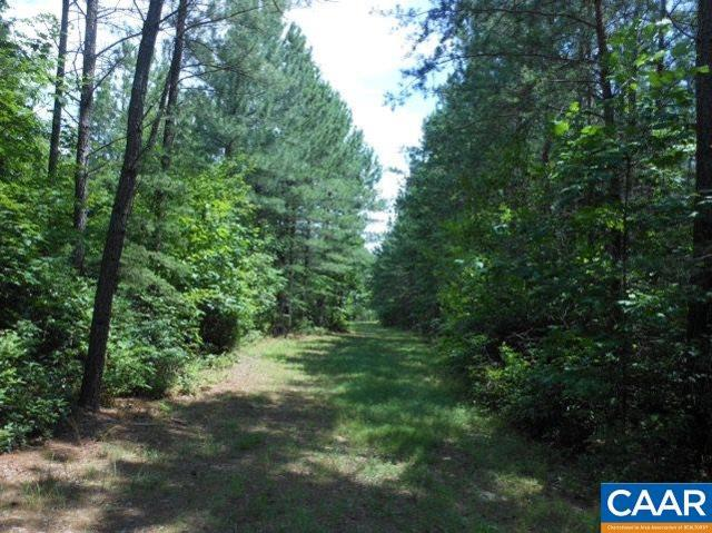 lot 14 Loblolly Ct #14, Shipman, VA 22971 (MLS #564453) :: Real Estate III