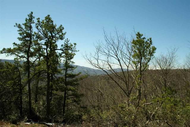N Summit Dr, Monterey, VA 24465 (MLS #570146) :: Jamie White Real Estate