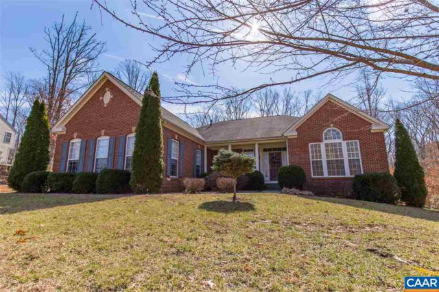 697 Reedy Creek Rd, LOUISA, VA 23093 (MLS #572107) :: Strong Team REALTORS