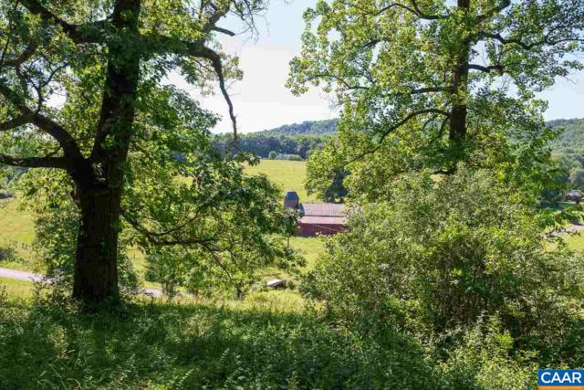 D-06 Edge Valley Rd D--06, North Garden, VA 22959 (MLS #577594) :: Real Estate III