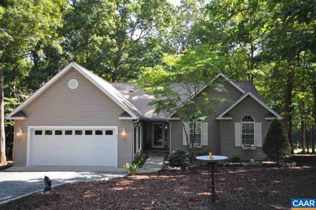 43 Out Of Bounds Rd, Palmyra, VA 22963 (MLS #579133) :: Strong Team REALTORS