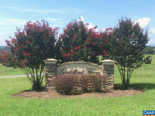 9 Ridgeview Dr #9, RUCKERSVILLE, VA 22968 (MLS #580409) :: Jamie White Real Estate