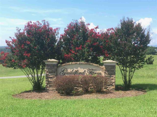 10 Ridgeview Dr #10, RUCKERSVILLE, VA 22968 (MLS #580410) :: Jamie White Real Estate