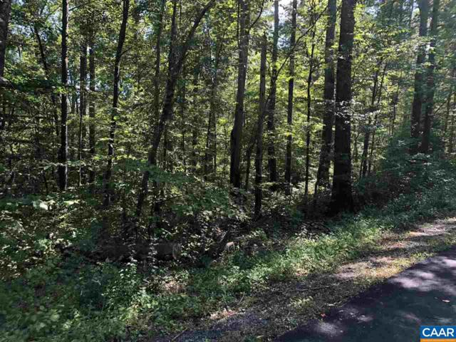 Lot 12 Buffalo Run #12, STANARDSVILLE, VA 22973 (MLS #580798) :: Real Estate III