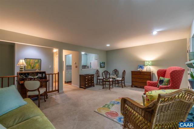 1248 Clifden Greene, CHARLOTTESVILLE, VA 22901 (MLS #581724) :: Real Estate III