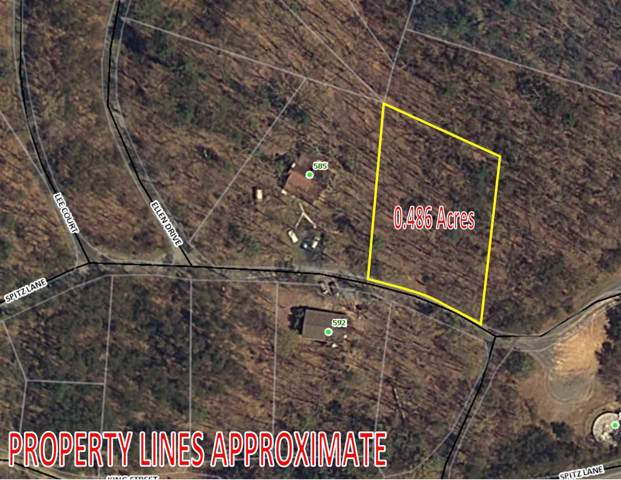 0 Spitz Ln #6, Basye, VA 22810 (MLS #582267) :: Jamie White Real Estate