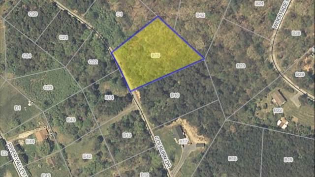 1 Colburn Dr B15, Rileyville, VA 22650 (MLS #583294) :: Jamie White Real Estate