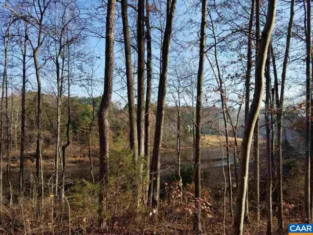 299 Logtrac Rd, STANARDSVILLE, VA 22973 (MLS #583360) :: Real Estate III