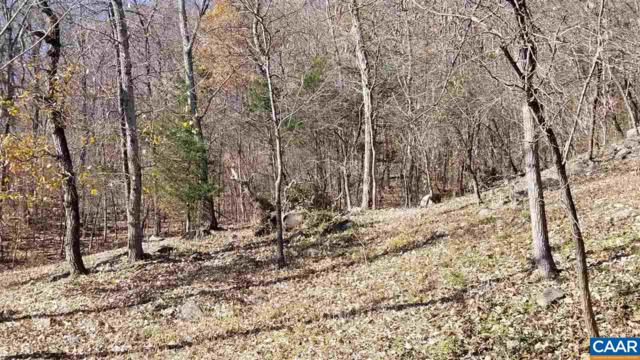 0 Farmview Rd, STANARDSVILLE, VA 22973 (MLS #583830) :: Real Estate III