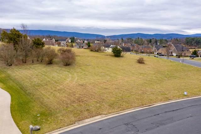 Lot 2-75 Jocelyn Ln, WAYNESBORO, VA 22980 (MLS #584599) :: Jamie White Real Estate