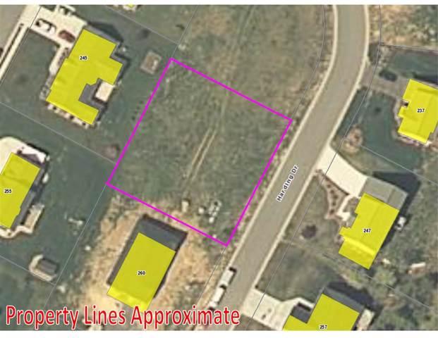 248 Harding Dr, BROADWAY, VA 22815 (MLS #584886) :: Jamie White Real Estate