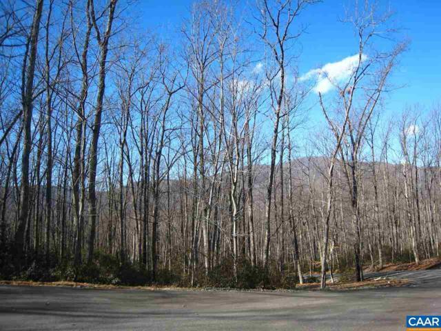 Oakcrest Ln #7, Nellysford, VA 22958 (MLS #585831) :: Real Estate III