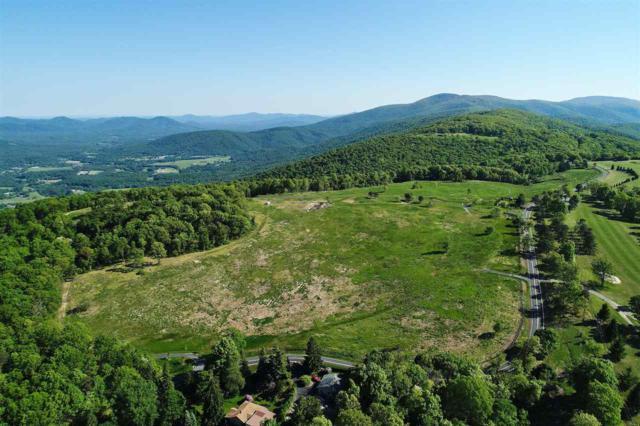 7 Elk Rock Meadow Dr #7, AFTON, VA 22920 (MLS #585944) :: Real Estate III