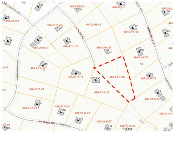 0 Phlox Rd, RUCKERSVILLE, VA 22968 (MLS #586020) :: Jamie White Real Estate