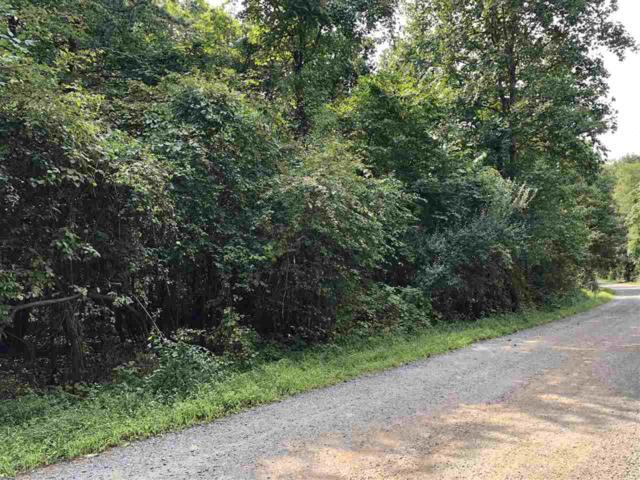 Lot 19 N Greene Acres Rd #19, STANARDSVILLE, VA 22973 (MLS #586142) :: Jamie White Real Estate