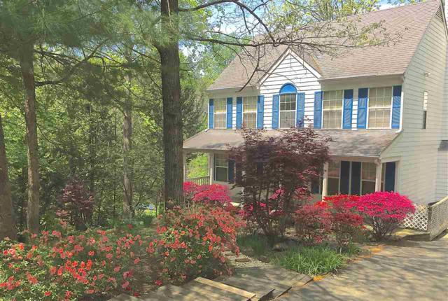 232 Blackthorn Ln, CHARLOTTESVILLE, VA 22902 (MLS #586198) :: Real Estate III