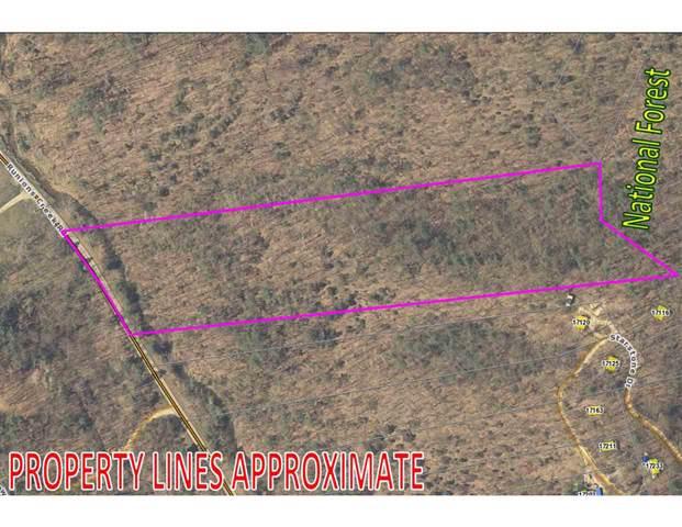 0 Starstone Dr, BROADWAY, VA 22815 (MLS #586460) :: Real Estate III