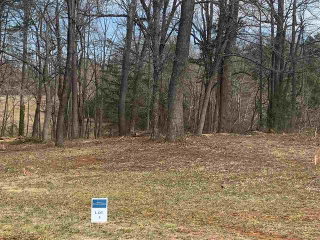 L 3 James Dr #3, RUCKERSVILLE, VA 22968 (MLS #586590) :: Real Estate III