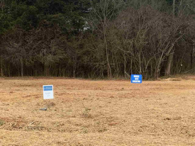 L 17 James Dr #17, RUCKERSVILLE, VA 22968 (MLS #586604) :: Jamie White Real Estate