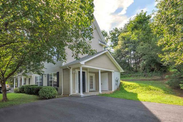 109 Sundrops Ct, CHARLOTTESVILLE, VA 22902 (MLS #586904) :: Real Estate III
