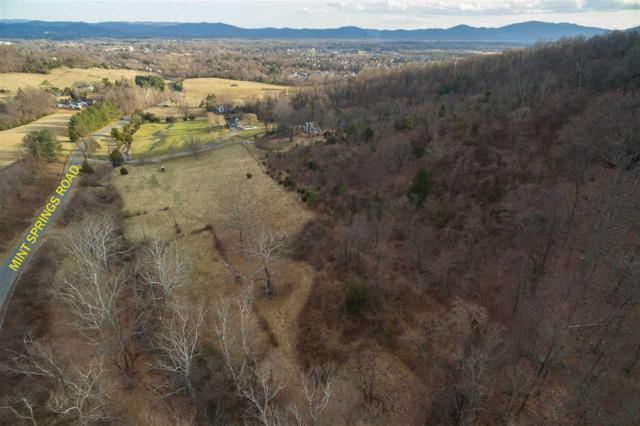 1634 Ruhr Pocket Ln, Crozet, VA 22932 (MLS #587056) :: Real Estate III