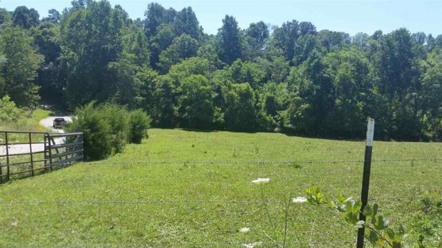 Rt. 706 Horseshoe Bend Rd, Roseland, VA 22967 (MLS #587118) :: Jamie White Real Estate