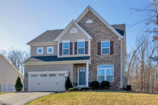 174 Manor Blvd, Palmyra, VA 22963 (MLS #587336) :: Real Estate III