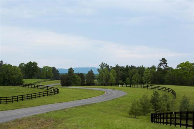 Lot 1 Blenheim Rd, CHARLOTTESVILLE, VA 22902 (MLS #587569) :: Jamie White Real Estate