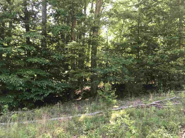 Lake Nelson Ln, Arrington, VA 22922 (MLS #588661) :: Real Estate III