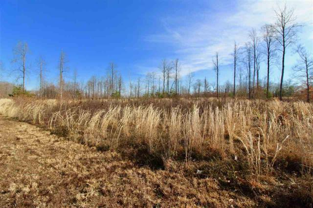 LOT 205 Rainbow Rdg #205, BUMPASS, VA 23024 (MLS #588761) :: Real Estate III