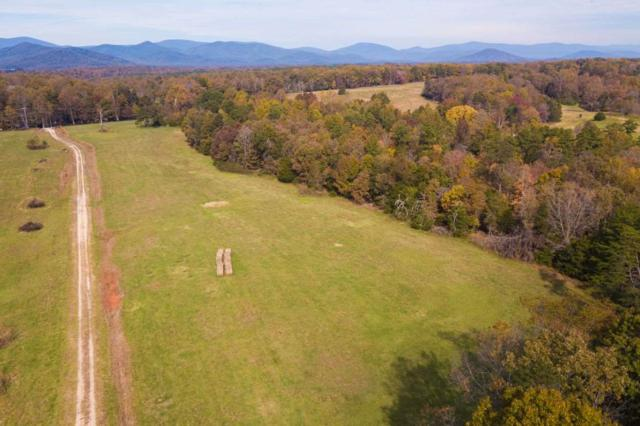 2005 A Owensville Rd 2A, CHARLOTTESVILLE, VA 22901 (MLS #588858) :: Real Estate III