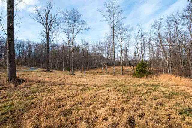 4 Handley Way, AFTON, VA 22920 (MLS #588913) :: Real Estate III