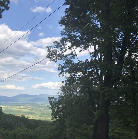 Forest Drive Ext D26, Luray, VA 22835 (MLS #588999) :: Jamie White Real Estate