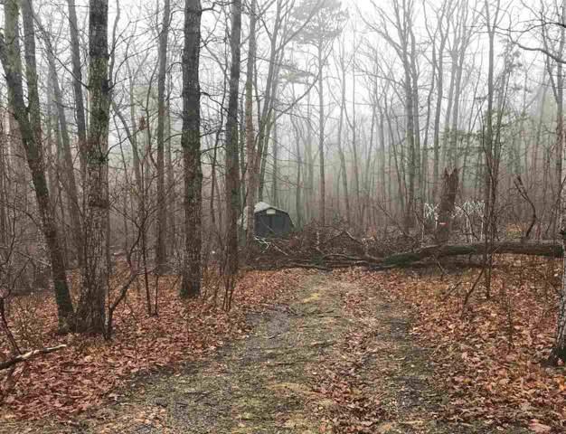 Wildwood Ln 27 S3, Shenandoah, VA 22849 (MLS #589000) :: Jamie White Real Estate