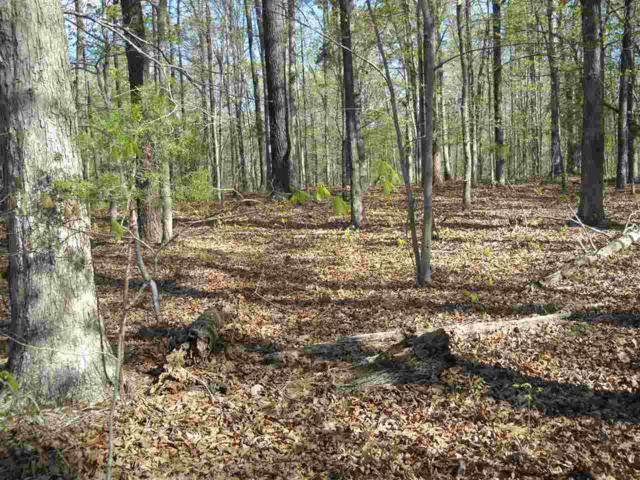 0 Gravel Hill Rd, Fork Union, VA 23055 (MLS #589090) :: Real Estate III