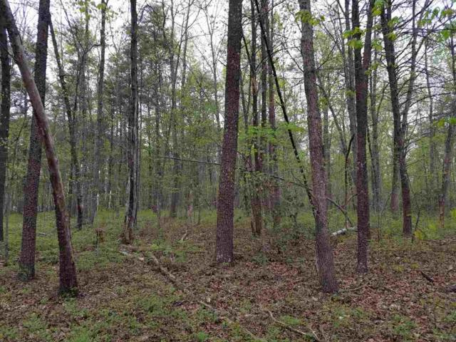 lot 8 Manteo Rd, BUCKINGHAM, VA 23921 (MLS #589289) :: Strong Team REALTORS