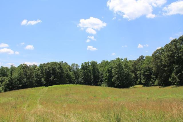 S Blue Ridge Tpk, Rochelle, VA 22738 (MLS #589588) :: Jamie White Real Estate