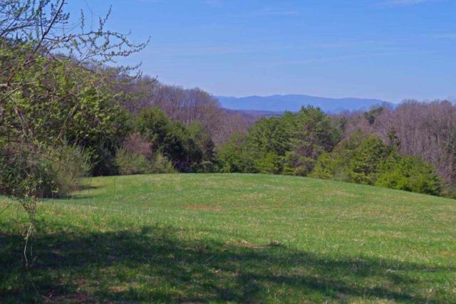 0 Lonesome Mountain Rd, CHARLOTTESVILLE, VA 22911 (MLS #589691) :: KK Homes