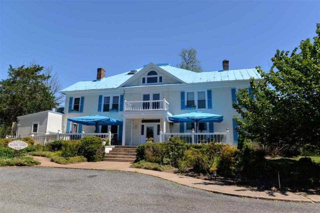 56 Rodes Farm Dr, Nellysford, VA 22958 (MLS #589795) :: Real Estate III