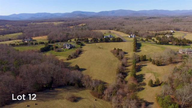 12 Frays Ridge Rd, Earlysville, VA 22936 (MLS #590245) :: Jamie White Real Estate