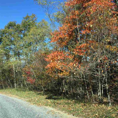 Lot 20 Peaksview Dr #20, WILLIAMSVILLE, VA 24487 (MLS #590316) :: KK Homes