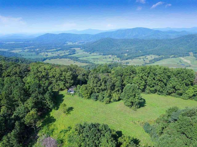 A Ruth Hollow Fire Trl, Madison, VA 22727 (MLS #590410) :: Jamie White Real Estate