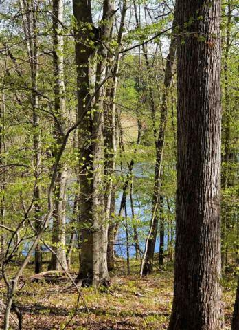 Lot 1D Wilhoits Mill Rd 1D, BARBOURSVILLE, VA 22923 (MLS #590619) :: Jamie White Real Estate