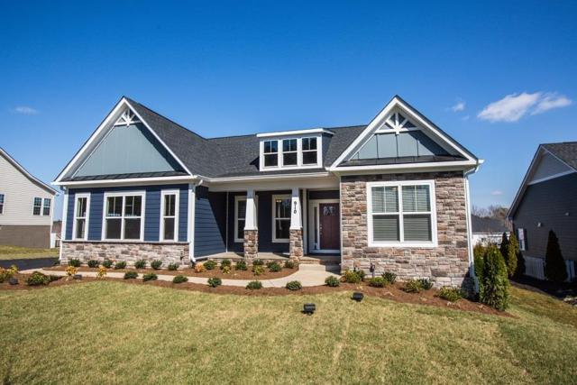 64 Crepe Myrtle Dr, ZION CROSSROADS, VA 22942 (MLS #590695) :: Real Estate III