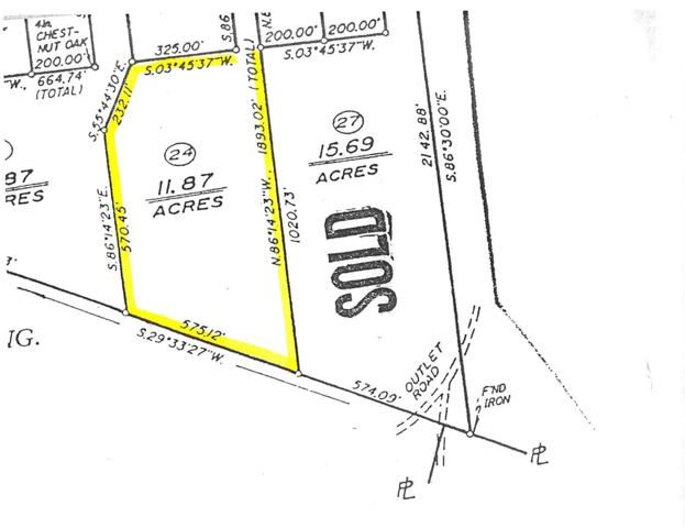 Lot 24 S Constitution Rte, SCOTTSVILLE, VA 24590 (MLS #590801) :: Jamie White Real Estate