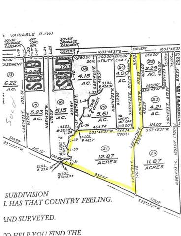 Lot 21 S Constitution Way, SCOTTSVILLE, VA 24590 (MLS #590804) :: Jamie White Real Estate