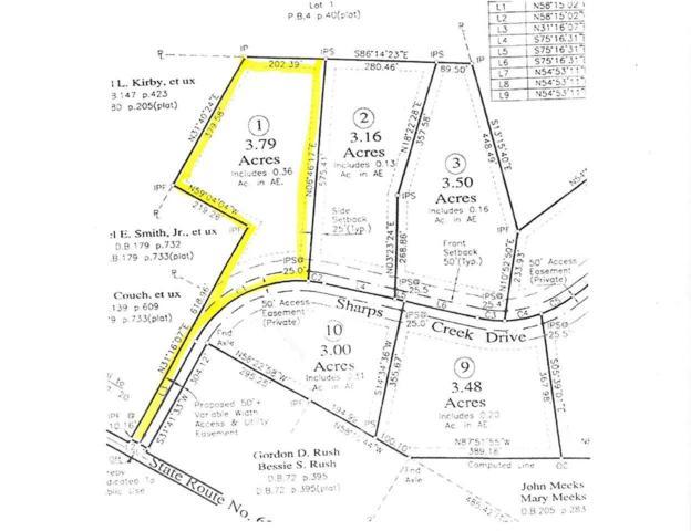 1 Sharps Creek Dr #1, SCOTTSVILLE, VA 24590 (MLS #590899) :: Jamie White Real Estate