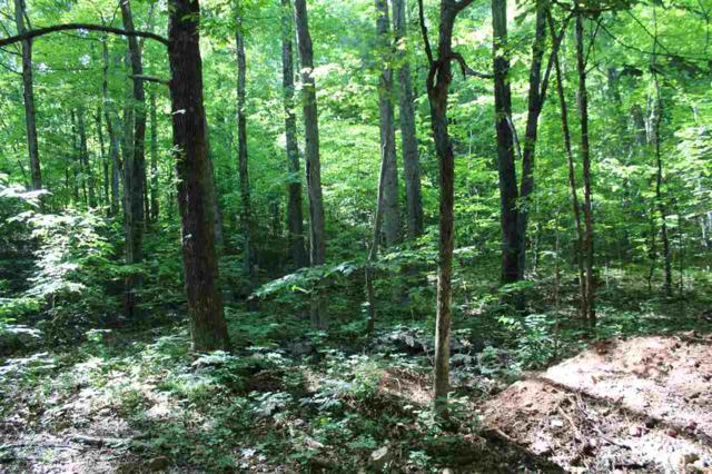 Lot 53 Red Bird Dr, STANARDSVILLE, VA 22973 (MLS #591044) :: Real Estate III