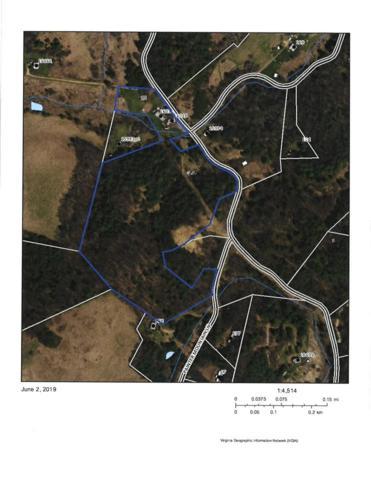 16031 Crabtree Falls Hwy, Vesuvius, VA 24483 (MLS #591389) :: Real Estate III
