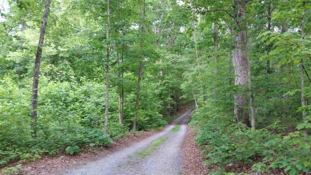 0 Secretarys Rd, SCOTTSVILLE, VA 24590 (MLS #591618) :: Jamie White Real Estate